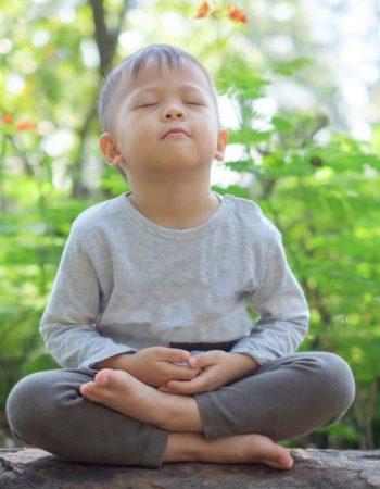 Body & Brain Yoga Tai Chi / Burke